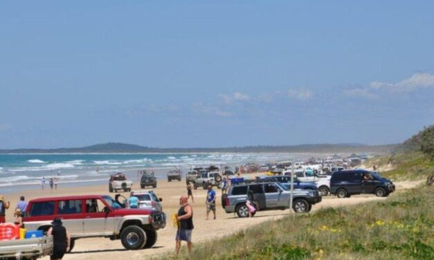 Noosa North Shore update