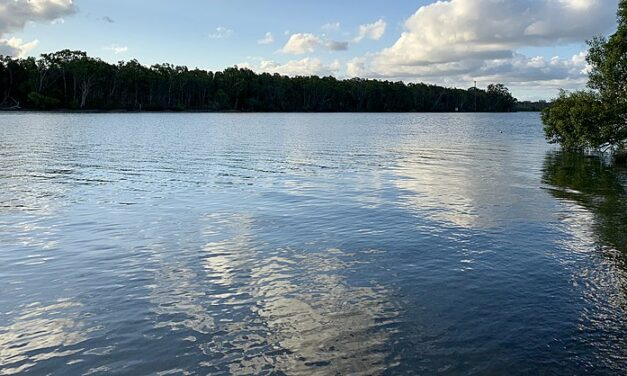 Noosa River testing update